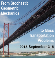 From Stochastic Geometric Mechanics to Mass Transportation Problems [banner]